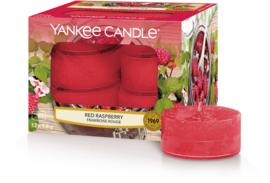Yankee Candle Red Raspberry - Tea Lights 12st
