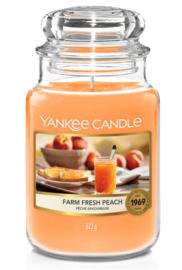 Yankee Candle Farm Fresh Peach - Large