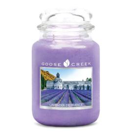 Goose Creek Lavender De France