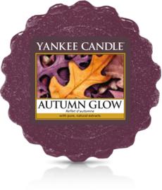 Yankee Candle Autumn Glow - Wax Melt
