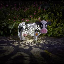 Daisy Cow - Koe - Solar