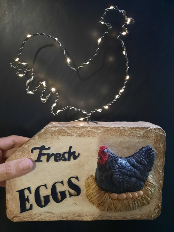 Solar Kip - Fresh Eggs - Verlichting op zonne-energie