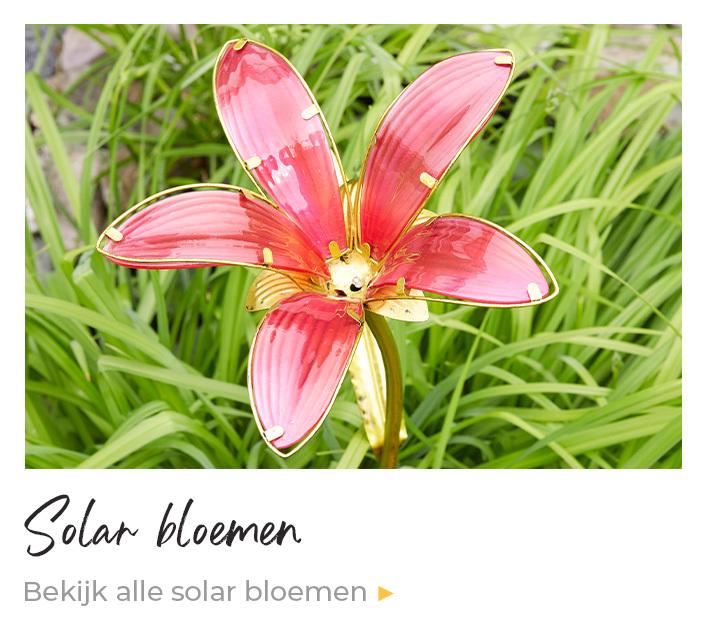 Solar bloemen tuinsteker verlichting op zonne-energie kopen Enjoythesun