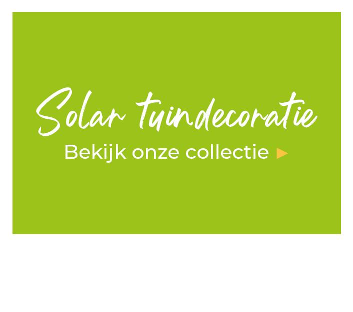 Solar bloemen kopen | Enjoythesun.nl