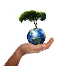 By Caatje en het milieu (2020-28/9)