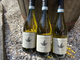 Campo Dottore Riesling