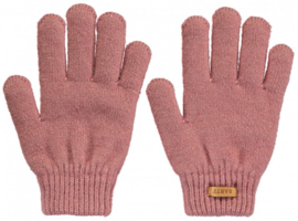 Rozamond handschoenen barts