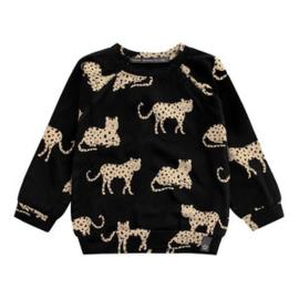 Sweatshirt Wild Cheetahs Your Wishes