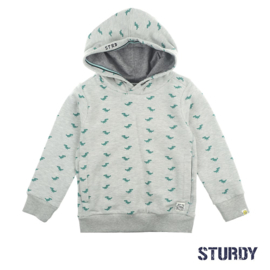 Hoody- Concrete Jungle- Sturdy