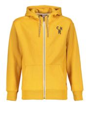 Charlie hoodie cardigan RAY- SCM