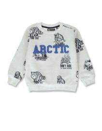 Sweatshirt met wolven groen/grijs