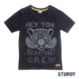 "Sturdy jongens t-shirt ""Hey you rocksteady"""