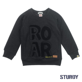 Sweater ROAR- Concrete Jungle- Sturdy