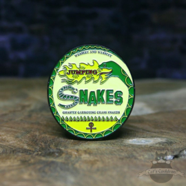 Harry Potter Pin Weasleys Jumping Snakes