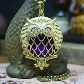 Owl diffuser necklace gold colored double sided