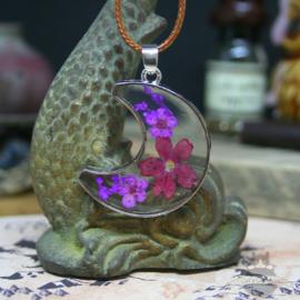 Lila Trockenblumen Halskette in Mondvorm