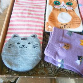 Katten sokken 5 paar roze lila en ecru maat 35-39