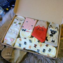 Cat socks 5 pairs cream and beige size 36-40