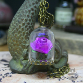 Paarse roos in glazen stolp ketting Belle en het Beest