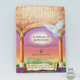 Harry Potter beeld Hermione Studies For Potions Class