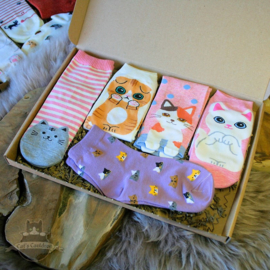 Cat socks 5 pairs pink lila and ecru size 35-39