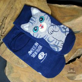 Blue sneaker socks American Shorthair cat size 35-40