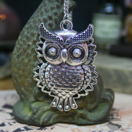 Owl necklace with vintage look on long chain