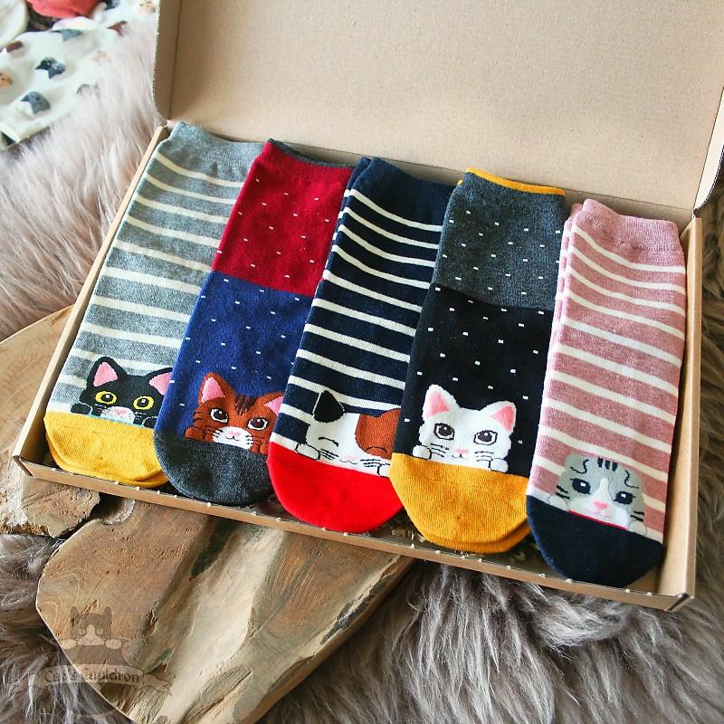 Cat socks kitten love 5 pairs stretch size 36-41