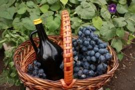 """Wijnproeverij """"maak kennis met wijn"""""""
