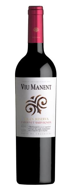 Viu Manent Cabernet Sauvignon Gran Reserva I 1 fles