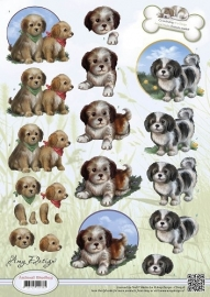 CD10536 Animal Medley - Puppies