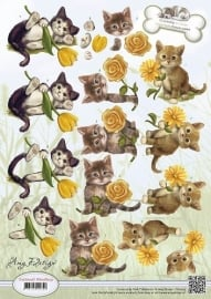 CD10537 Animal Medley - Kittens
