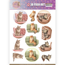 3D Pushout - Amy Design - Cats World - Show Cats  SB10382