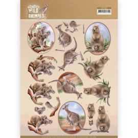3D Cutting sheet - Amy Design - Wild Animals Outback - Kangaroo  CD11483