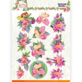 3D cutting sheet - Jeanine's Art - Exotic Flowers - Pink Flowers  CD11690