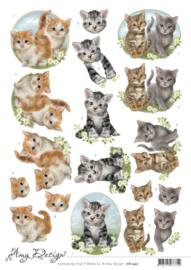 3D Cutting Sheet - Amy Design - Cats CD11457