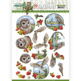 3D Push Out - Amy Design - Amazing Owls - Meadow Ols SB10488