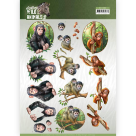 3D Knipvel - Amy Design - Wild Animals - Monkeys  CD11299