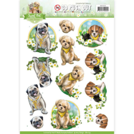 Pushout - Amy Design - Sweet Pet-Dogs   SB10195