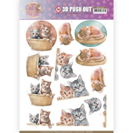 3D Pushout - Amy Design - Cats World - Kittens   SB10380