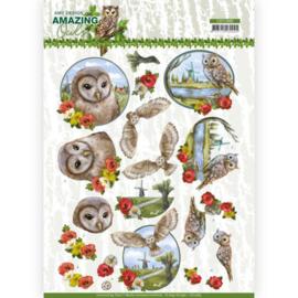 3D Cutting Sheet - Amy Design - Amazing Owls - Meadow Owls  CD11565