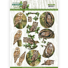 3D Cutting Sheet - Amy Design - Amazing Owls - Forest Owls  CD11564