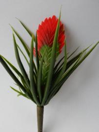 Tillandsie cyanea rot Kunstpflanzen und Kunstblumen