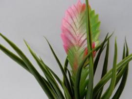 Tillandsia mauve kunstplanten en kunstbloemen