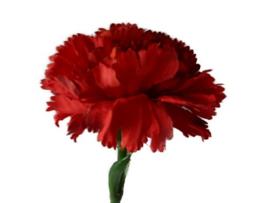 Anjer M  rood van PTMD kunstbloemen kunstplanten