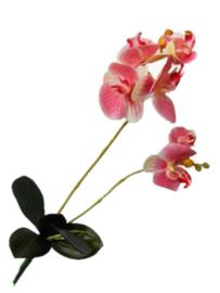 Orchidee phalaenopsis pink kunstbloemen en kunstplanten