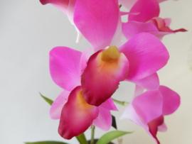 Orchidee Dendrobium  lila/paars  Kunstplanten en kunstbloemen