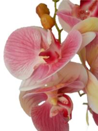 Orchidee Kunstpflanze pink