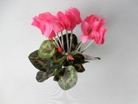 Alpenveilchen klein rosa Kunstblumen und Kunstpflanzen