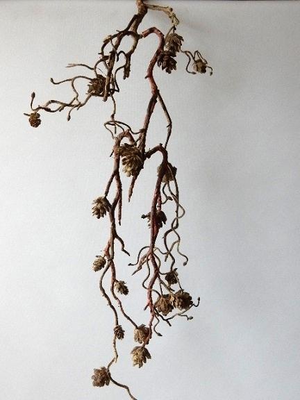 herfst, tak, kunstplanten, kunstbloemen, denneappel
